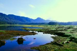 <!--:IN-->Debit Air Situ Lembang Menyusut <!--:-->