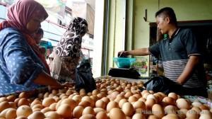 Harga pakan naik, Harga Telur Ayam ikut naik