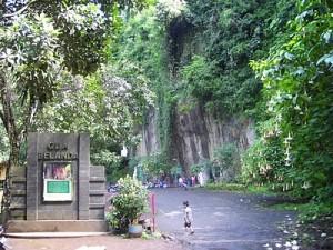 taman hutan raya djuanda 021