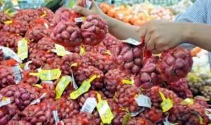 ProduksiI Bawang Merah Di Cirebon Turun