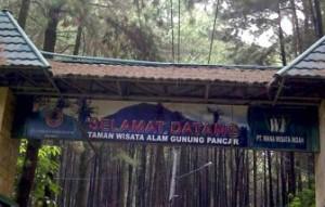 Air-Panas-Gunung-Pancar-Bogor