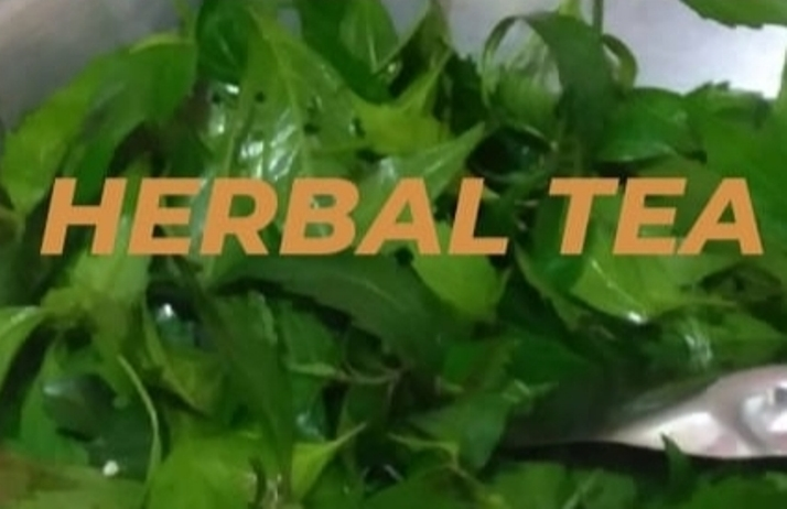 teh herbal kumis kucing Bumdes Citra Gunung Malang